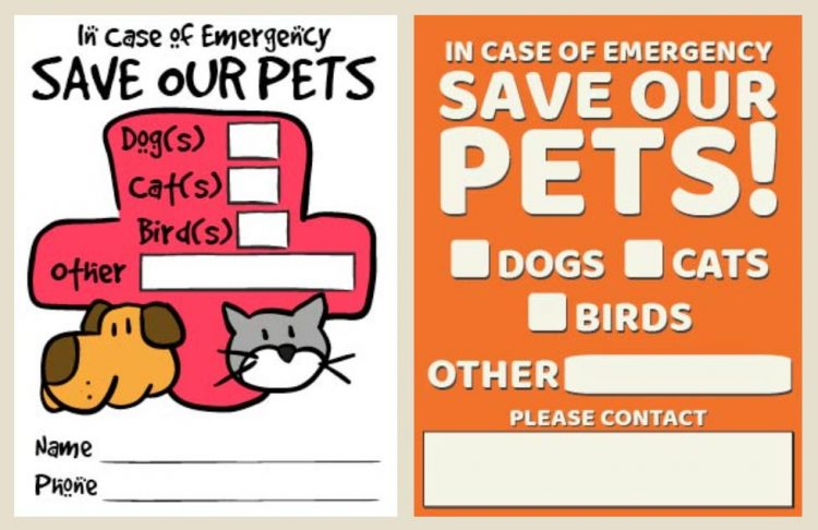 Stickers In Case of Fire Save My Chicken Decals