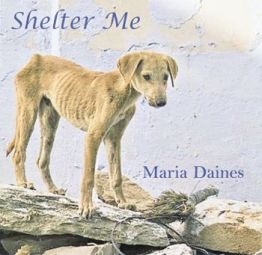 Maria Daines - Shelter Me