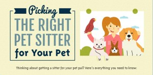 How to pick a Pet Sitter