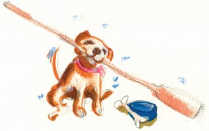 De-worming Your Dog