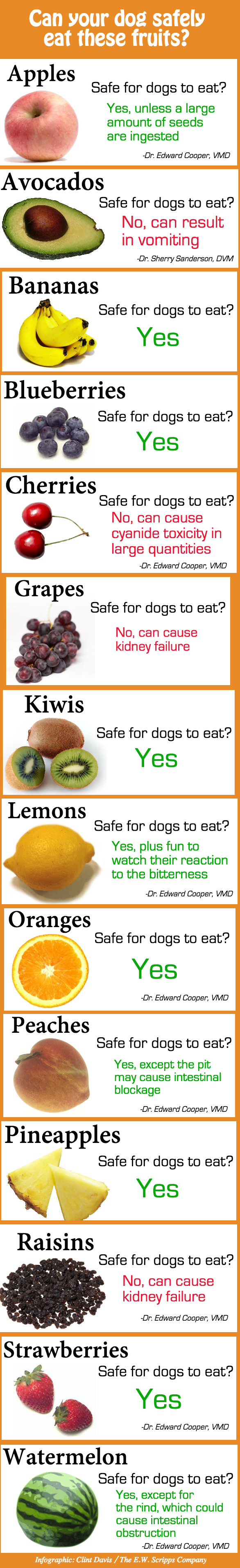 Fruit Safe For Dogs