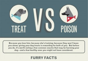 Treat vs poison for dogs